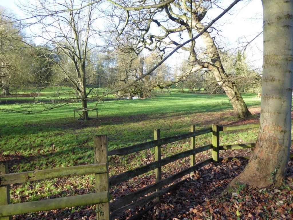 Calverton House grounds