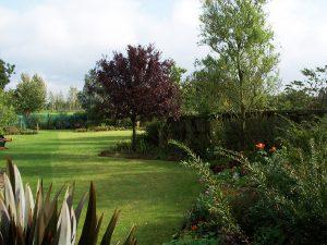 Bird's yard (now garden)