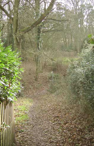 Trail of views down Aspley Heath