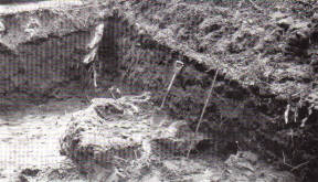 Trench during dig