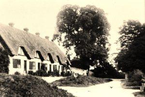 Five Hausen c.1910