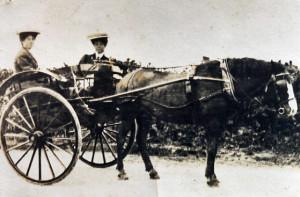 7Gudgin horse cart