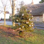 Decorated tree on The Knoll