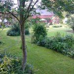 A Sherington garden