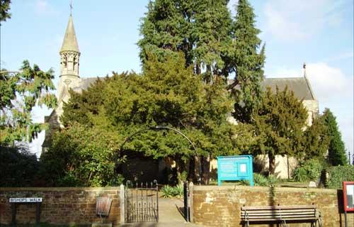 Trail of views down Aspley Heath